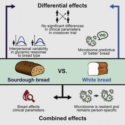 Healthier Bread