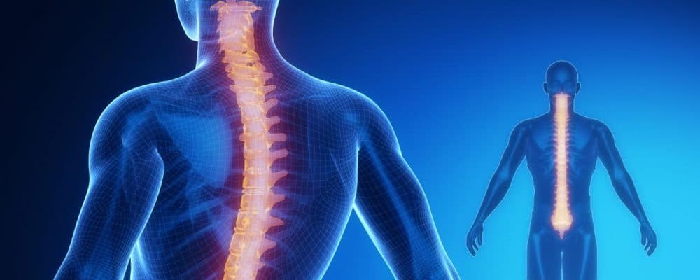 Paralyzed Regain Use of Hands with Noninvasive Spinal Stimulation Method