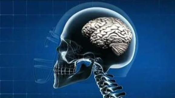 Scientists Develop Blood Test to Diagnose Brain Injury
